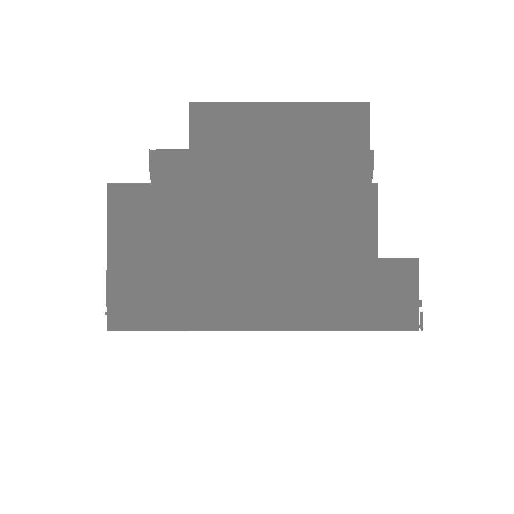 transformbst.com
